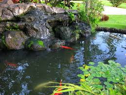 how to make a garden pond waterfall the garden inspirations