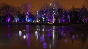 tree lights at the morton arboretum enchanted forest pencities chicago