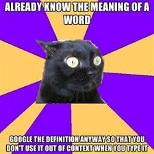 Anxiety Cat Meme - 21 best anxiety cat memes images on pinterest anxiety cat meme