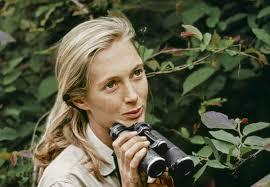 allison corona photography rob carrie s mid century film archive wild scenic film festival