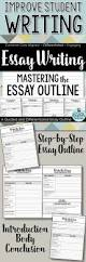 Introductions To Essays Examples Best 20 Essay Writing Ideas On Pinterest Essay Writing Tips