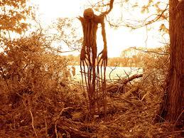 scarecrow halloween prop 2005 scarecrow pics