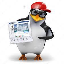 Meme Penguin - cool 3d penguin stock image memes home facebook