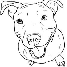 download pit bull coloring pages free coloring