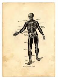 Printable Halloween Skeleton Instant Halloween Art Printable Download Black Skeleton Man