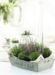 Designspiration 10 Great Ideas for Container Gardens  Julie Bluet