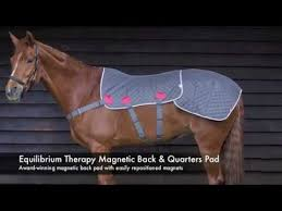 equilibrium therapy magnetic back u0026 quarters pad new 2016 youtube