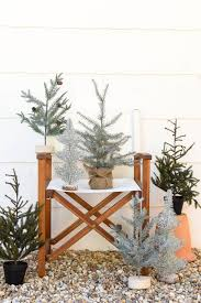 favorites where to buy mini trees iron twine