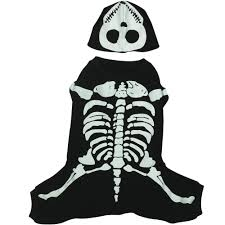 Glow Dark Halloween Costumes Casual Canine Glow Bones Costume Multiple Sizes