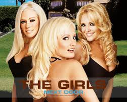 the girls next door other tv shows i like besides gossip