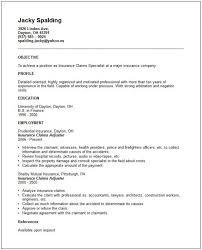 Some Experience Resume 37 Best Zm Sample Resumes Images On Pinterest Sample Resume