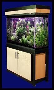 petsmart fish aquarium stands aquarium design ideas