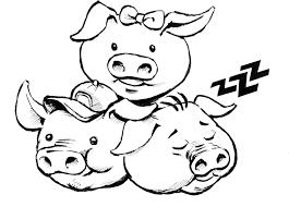 pigs u2013 dufflebag theatre
