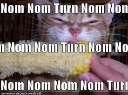 Typewriter Meme - electrical audio view topic corn eating method the typewriter