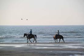 Hutchinson Island Florida Map by Beach Horseback Riding In Florida Where To Go Florida Rambler