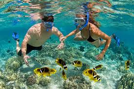 Hawaii snorkeling images Kona snorkel gear rentals kahalu 39 u bay surf sea jpg