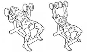 Incline Dumbell Bench Press The Best Chest Workouts To Build Upper Pecs Nearfox