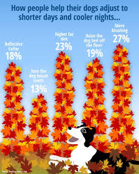 Are All Dogs Colour Blind 80 Best Dogs At A Glance Images On Pinterest Dog Lovers Dog