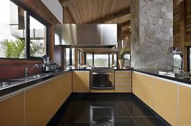 mountain house kitchen design ideas showcasing u shape kitchen