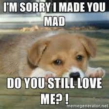 Im Mad At You Meme - i am sorry sad images ordinary quotes