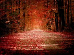 quotes about beauty of fall autumn