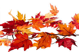 maple leaf garland with lights 13 97 craftmore 6 feet fall maple leaf garland colors range from