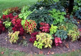 Garden Plans Zone - download shade garden designs solidaria garden