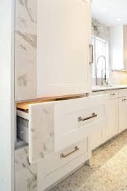 pro kitchens design ultra modern kitchen design induction cooktop tigerwood flooring