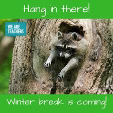 Memes About Winter - 18 hilarious winter break memes only a teacher will understand
