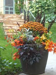 fall container garden need to swap out begonias and put in mums
