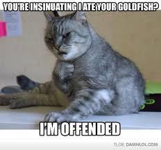 Funny Animal Memes Tumblr - unique 27 funny animal memes tumblr wallpaper site wallpaper site