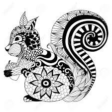 164 coloring book pages squirrel cliparts stock vector and