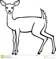 results for how to draw doe female deer color math x math