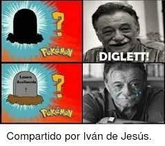 Memes De Laura - 25 best memes about diglett diglett memes