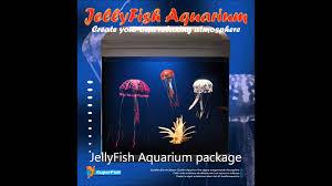 jellyfish u0027 aquarium youtube
