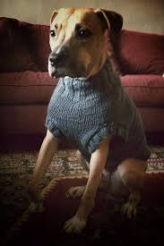 pet sweaters the big list of free knitting patterns knits for pooches