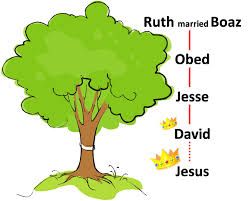 what is that in the family tree ruth 4 1 12 for our city