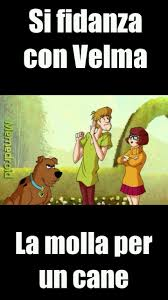 the best scoby shaggy velma memes memedroid