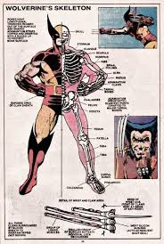 wolverine s claws do you prefer wolverine s claws to be bone or adamantium quora