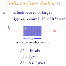 cross section definition