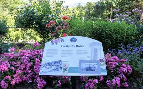 Map My Ride Portland by Portland Mansion A Bike Ride To Portland U0027s Historic Pittock Mansion