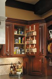 Kitchen Cabinet Interior Organizers by 24 Best Rev A Shelf Pantry Images On Pinterest Kitchen