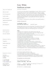 healthcare resume healthcare resume inssite