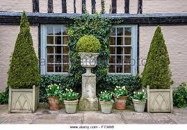 English Box Topiary - topiary ball stock photos u0026 topiary ball stock images alamy