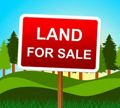 free stock photo of land for sale means real estate agent and