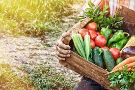 from farm to table upcoming events farm to table cherokee county