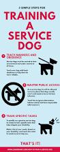 best 25 service dogs ideas on pinterest service dog training