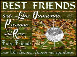 thanksgiving quotes friends best friend quotes graphics