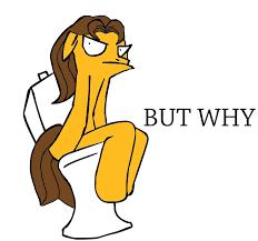 Meme Toilet - image 8652 but why caramel meme toilet why jpg jpg gyropedia