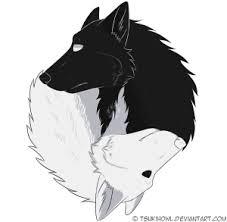 feminine journey white wolf boys and black wolf boys sjoerd bergstra